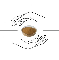 logo Ephedra mahuang extract